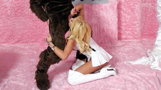 Fine blonde Riley Steele sucks off a costumed dude